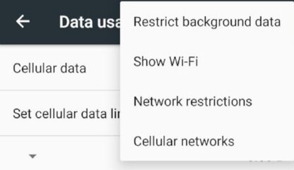 check-restrict-data-usage